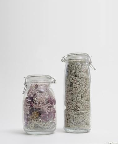 Perlennetze, Seedbeads, Zwirn, 1995, in Einweckgläsern